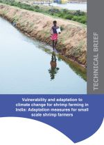 Technical brief: Vulnerability and adaptation to climate change for shrimp farming in India