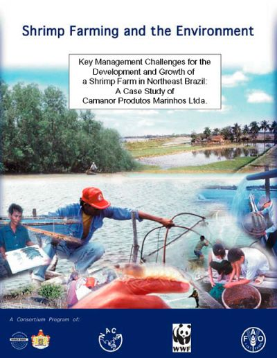 Key management challenges for the development and growth of