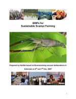 Better management practices for sustainable scampi (freshwater prawn) farming