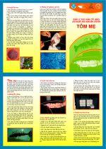 Leaflets on better management practices for Penaeus monodon in Vietnam