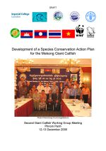 Development of a species conservation action plan for the Mekong giant catfish