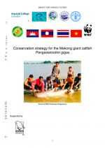 Conservation strategy for the Mekong giant catfish Pangasianodon gigas: Draft for consultation