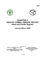 Quarterly Aquatic Animal Disease Report, January-March 2000