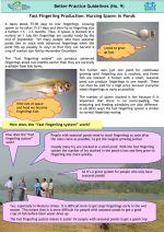 Better-practice guidelines: Fast fingerling production - nursing spawn in ponds