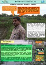 Better practice guidelines: Fingerling production nursing fry in ponds