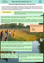 Better practice guidelines: Advanced fingerling production in seasonal ponds
