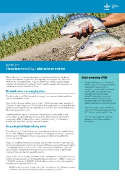 Fact sheet: Tilapia lake virus (TiLV): What to know and do?