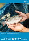Tilapia lake virus (TiLV): Literature review