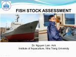 Stock assessment and practical procedures