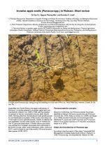 Invasive apple snails (Pomacea spp.) in Vietnam: Short review