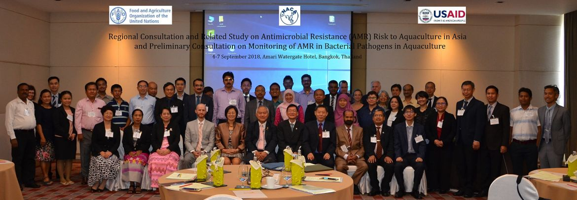 Participants in the regional consultations on antimicrobial usage and resistance.