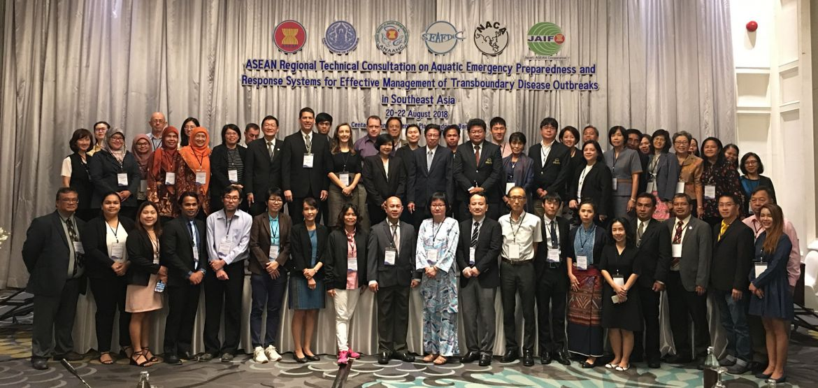 Participants in the ASEAN regional technical consultation.