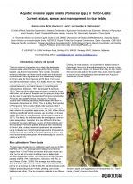 Aquatic invasive apple snails (Pomacea spp.) in Timor-Leste: Current status, spread and management in rice fields