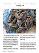 Fattening of mud crab Scylla serrata in estuarine region of south-eastern West Bengal, India