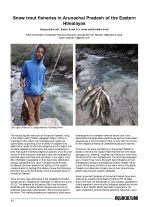 Snow trout fisheries in Arunachal Pradesh of the Eastern Himalayas