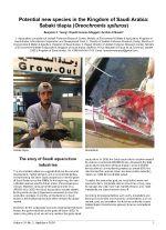 Potential new species in the Kingdom of Saudi Arabia: Sabaki tilapia (Oreochromis spilurus)